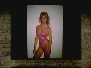 Heather Locklear - Matt Houston (1982)